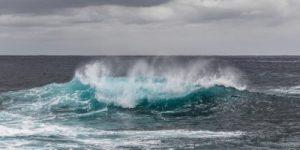 Уровень кислотности Мирового океана стремительно растет