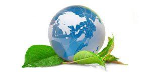 Вопросы экологии актуальны для всего земного шара