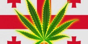 Грузия вознамерилась стать крупным экспортёром марихуаны