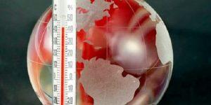 Потепление на полградуса удвоит темпы сокращения популяций растений и животных