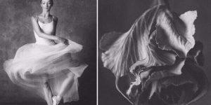 """Фотопроект """"Балерина и цветы"""""""