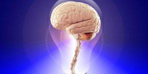 Отсутствие света ухудшает работу мозга
