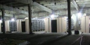 В Оренбурге задержаны владельцы майнинг-фермы, «укравшей» электричество на 60 млн. рублей