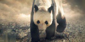 Как защищают животных, чтобы уничтожать людей