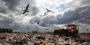 Пластиковое загрязнение планеты. Есть ли жизнь без пластика?