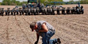 Стон американских аграриев