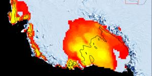 Ученые нашли следы массового таяния ледников на поверхности Антарктиды