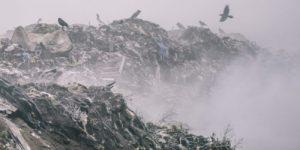 Первая мировая мусорная война