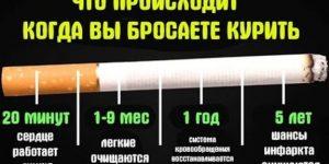 Что происходит, когда вы бросаете курить. Организм реагирует мгновенно