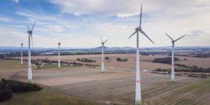 Ветряные турбины убивают больше птиц, чем самые опасные хищники