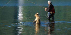 ТОП 10 неожиданных встреч с животными на рыбалке