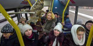 Трамвайным хулиганам грозят семилетними сроками