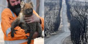 Эксперты рассказали, почему пожары в Австралии так сложно потушить
