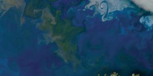NASA выложило в открытый доступ фотоальбом Земли