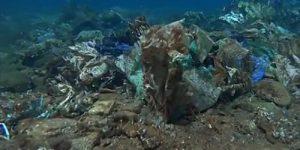В море нашли чудовищный риф из пластиковых отходов
