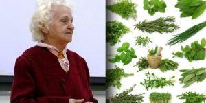 Мудрые советы сибирской учёной-травницы Лидии Суриной.