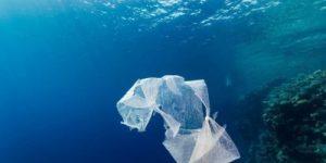 Чёрное море, Азов и Средиземье завалены пластиком. Сколько мусора в Мировом океане?