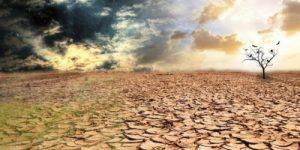 Опустынивание и засуха
