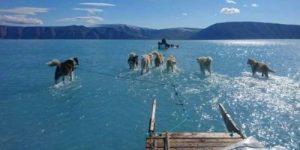 Гренландия начала таять. И это проблема для всего мира