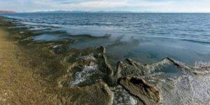 Содержание токсинов в Байкале приблизилось к критической цифре