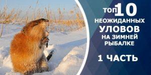 ТОП 10 неожиданных уловов на зимней рыбалке