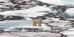 УрО РАН: Глобальное потепление в Арктике завершилось