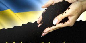Судьба Украины была предрешена 5 лет назад