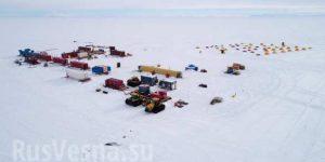 Подо льдами Антарктиды найдены мёртвые организмы (ФОТО, ВИДЕО)