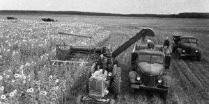 Как в СССР убивали сталинскую экономическую систему
