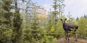 Эко-посёлки помогут выжить в период любого кризиса