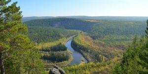 Дефицит водяного пара в атмосфере погубит леса Сибири