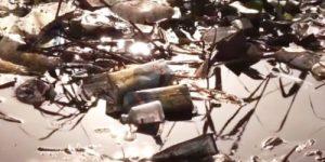 Великий Нил превратился в сточную канаву. Видео