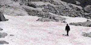 Розовый ледник указывает на активное изменение климата