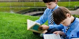 Подборка «Книги на лето» размещена в открытом доступе