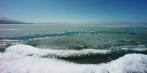 Из-за растущей подвижности арктического льда усиливается загрязнение воды