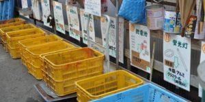 Камикатсу: легко ли жить в японском городе, где все жители обязаны сортировать отходы
